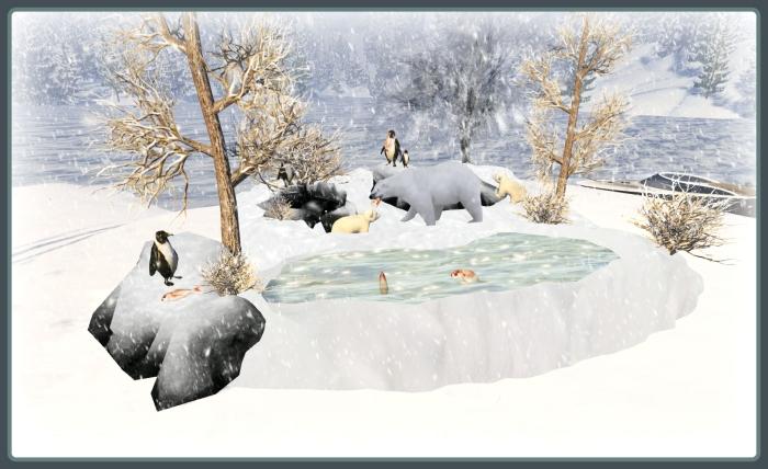 Swank pond3.jpg